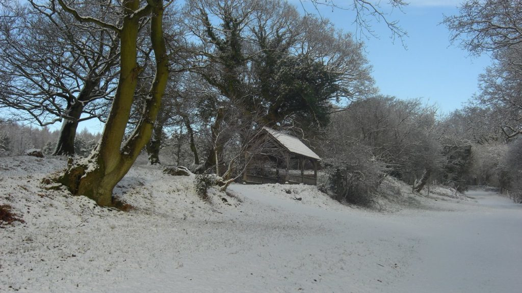 Usk Castle Chase Natural Burial Meadow in snow