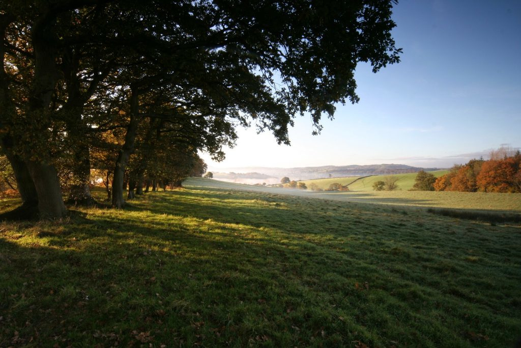Usk Castle Chase Natural Burial Meadow in the Autumn